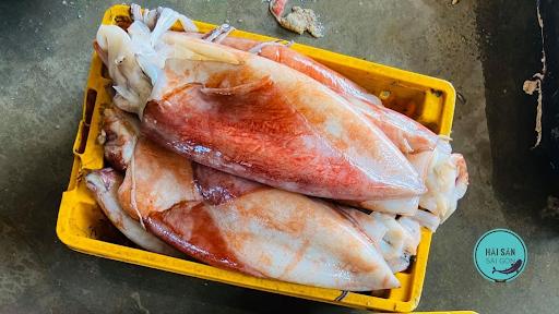 Giá mực lá đại dương bỏ sỉ bao nhiêu 1kg? mua ở đâu uy tín